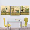 Protezala Canvas Art Still Life cvjetni ukras Set od 3