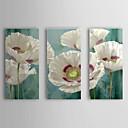 手描きの 花柄/植物の 3枚 キャンバス ハング塗装油絵 For ホームデコレーション