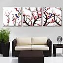 e-HOME® plátně art švestka pobočky ptáci dekorace malování set of 3