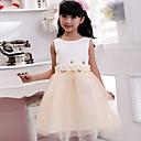 Krinolina Do sredine lista Haljina za djevojčicu s cvijećem - Pamuk Bez rukava Ovalni izrez s Aplikacije