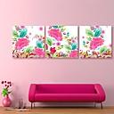 E-home® pruži platnu si šarenim uzorcima ukras slikarstvo set 3