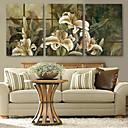 e-HOME® protáhl Umělecké plátno lilie dekorativní malba sadu 3