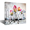 Vizualni STAR® moje izgubljene sreće - uvenu ruže vole platnu zid umjetnosti jedna ploča visoke kvalitete platnu spremni objesiti