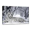 vizuální star®tiger zvíře malířské plátno umění v zimě sníh na plátně tisk