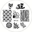 slatka sova nail art žigosanje pečat predložak slike Ploča manikura alata rođen lijepe bp54