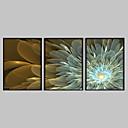 Abstraktní květiny a zarámovaný na plátně Sada 3