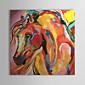 ručno oslikane ulje na platnu apstraktno konja 1303-ab0425