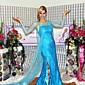 Cosplay Kostýmy / Kostým na Večírek Filmové a TV kostýmy Festival/Svátek Halloweenské kostýmy Modrá Jednobarevné Šaty Halloween / Vánoce