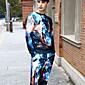 Muži Aktivní Šik ven Punk & Gothic Běžné/Denní Sportovní Klub Activewear Set 3D tisk Velkoformátové Kulatý Lehce elastické Polyester